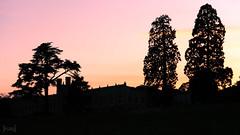 Ashton Court at Sunset, Somerset, UK (KSAG Photography) Tags: silhouette sunset trees tree park estate bristol somerset england europe britain uk unitedkingdom landscape rural nikon may 2018 countryside skyline wideangle hdr