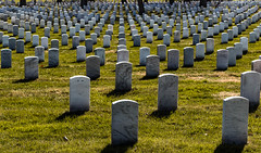 Heroes Laid to Rest 111 (bleedenm) Tags: 2018 arlingtonnationalcemetery dcp march photographybreakthrough spring urban virginia washingtondc workshop