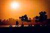 Chowpatty Sunset (iratebadger) Tags: nikon nikond7100 d7100 dark sky shadows silhouette sunset trees person people walking city mumbai india sun coloba chowpatty buildings lightroom light iratebadger