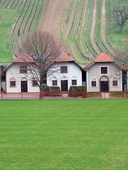 066_Moravian_Tuscany (Overtherainbow changes to KV Photography) Tags: katerinavodrazkova kvphotography landscape moravsketoskansko morava krajina moraviantuscany jiznimorava southmoravia moraviantoscana šardice