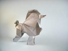 Poodle - Yoo Tae Yong (Rui.Roda) Tags: origami papiroflexia papierfalten dog chien perro cão cachorro poodle yoo tae yong