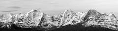 Jungfrau (lookashG) Tags: sonyslta99v 70400mmf456gssm alps alpy alpyszwajcarskie jungfrau schweiz switzerland szwajcaria blackandwhite czarnobiałe góra góry krajobraz landscape lookashggmailcom mountain mountains natura nature panorama scape łukaszgwiździel