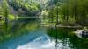 Piccolo lago alpino (BORGHY52) Tags: lago laghialpini laghiditalia laghetto lagodelmoncenisio moncenisio primavera riflessi riflesso riflessinellacqua maggio paesaggio paesaggi landscape waterscapes