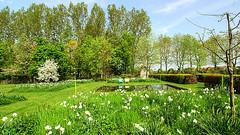 Audrey Hepburn — 'To plant a garden is to believe in tomorrow.' (genevieve van doren) Tags: bellegem flanders westvlaanderen garden jardin spring printemps detuinenvanbelgie thegardensofbelgium lesjardinsdebelgique