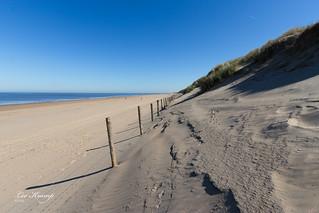 Dunes, beach, sea and a row of poles.