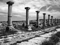 DSCN0780 Volubilis (laurentbourg07) Tags: colonne volubilis maroc vestiges ruines romain colonnes