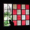 the hours (Source image for KP TT #196) (CatnessGrace) Tags: kreativepeople treatthis cat silhouettes lightandshadow window publicdomain