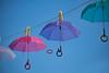 The moment (mare photo) Tags: themoment dermoment streetart jonglage detail schirm transparent umbrella gaukler ashortstory flickrunited