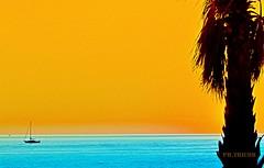 Scivolando via al tramonto la barca  s'inoltra in mare-Haiku (Corrado Tripicchio) Tags: mare tramonto barca palma