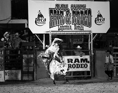 024693763310-97-Cowboy Bull Riding at the Clark County Fair and Rodeo-6-Black and White (Jim There's things half in shadow and in light) Tags: 2018 america april canon70200lens clarkcountyfairandrodeo mojave nevada southwest usa action animal bull bullriding cowboy desert sports blackandwhite