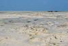 Джамбиани (Oleg Nomad) Tags: танзания занзибар джамбиани пляж океан песок облака вода жара tanzania jambiani ocean indian beach sand water africa travel