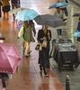 #2018#April-24 #HongKong #覓光者 #Hunterofthelight #hk24hr  #City#life#minimalist #極簡主義 #頓悟#Realize #SKY #spunsugar #棉花糖#Tourist #雲圖 #陽光 #Sun #自然 #natural #Shutterstock#GettyImages #Mattleung (leung.manfai@ymail.com) Tags: 2018 hongkong 覓光者 hunterofthelight hk24hr city 極簡主義 頓悟 sky spunsugar 棉花糖 雲圖 陽光 sun 自然 natural shutterstock mattleung