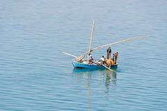 Barque et pêcheurs (jeanmichelchuiche) Tags: boutre filet pêcheur bateau «greatbitterlake» égypte «grandlacamer» lac tourdumonde costa luminosa costaluminosa 2017 aroundtheworld suez canal canaldesuez