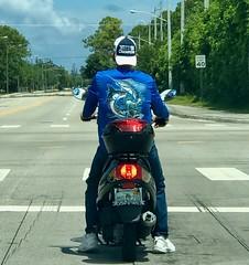 Guy Harvey fan (LarryJay99 ) Tags: guyharvey blue streets men male man guy guys dude dudes caps backwardscaps motorcycle bike spreading manspreadingbulge bulges bulging jeans urban urbanite urbanvegetation trees
