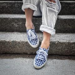 waiting for the summer (-liyen-) Tags: aaw activeassignmentweekly shoes sneakers gingham jcrew steps blue square fujixt2 bestofweek1 bestofweek2 bestofweek3 challengeyouwinner cyunanimous