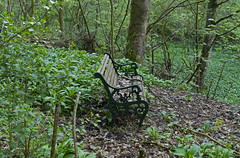 Rustic Comfort (Mike Serigrapher) Tags: cressbrook dale peakdistrict seat bench rustic leafy