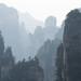 Valley of Giants