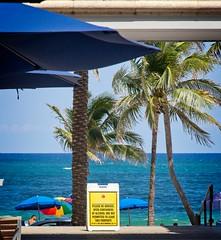 Fort Lauderdale Beach mall (LarryJay99 ) Tags: 2018 beach streets people ftlauderdale ocean atlanticocean foliage urbanity mall center publicspace