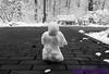 P1010060-2 (Yvonne23021984) Tags: freibrug freiburgimbreisgau badenwürttemberg schlossbergturm schlossberg münster freiburgermünster staufen glottertal schwarzwald schwarzwaldklinik stgeorgen innenstadt city stadt schwarzweis blackandwhite landschaft landscape nature naturephotography naturfotografie natur burg schauinsland seilbahn castle cablerailway schnee snow märz march april ausflug altstadt wanderung eidechse lizard gecko aussicht weinberge vineyards sanktblasiuskirche church staufenimbreisgau burgruinestaufen rathaus cityhall burgstaufen schneemann olaf snowman sonne sonnenschein himmel sky sun wald forest spaziergang