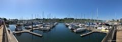 Harbor boats in Olympia (CIAphotos) Tags: marina olympia olympiawa olympiamarina boat boats sailboat docks
