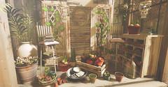 Greenhouse Charm (kellytopaz) Tags: greenhouse succulents chandelier wood stool plants greenery book pots