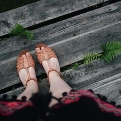 summer (Faerye.) Tags: summer canon sweden legs fern ferns nature dark