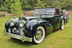 7th Annual San Marino Motor Classic (USautos98) Tags: 1947 triumph 1800 roadster tomleonard
