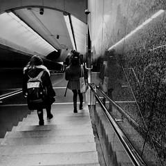 Descente assistée... (woltarise) Tags: métro station laurier escalier descente reflets streetwise iphone6s montréal