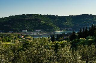 Sull'altura di Strugnano (Strunjan - Slovenja)