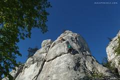 Climbing in Jura (majatravels) Tags: climbing rocks poland polska jura wspinaczka outdoor people sport rock sky tree