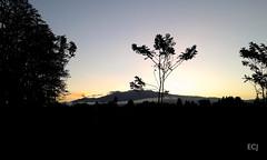 Un amanecer de febrero, 2017, camino al trabajo/ One sunshine, February, 2017, on the way to my workplace (vantcj1) Tags: vegetación amanecer naturaleza nubes volcán caminata erupción valle silueta