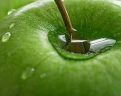 Granny Smith (DASEye) Tags: davidadamson daseye nikon d750 apple apples green macro grannysmith water waterdrops wet droplets stem
