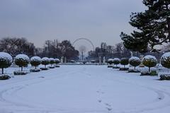 La grande roue (StephanExposE) Tags: paris iledefrance france stephanexpose parc park tuileries jardin jardindestuileries neige snow blanc white canon 600d 1635mm 1635mmf28liiusm