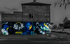 N4T4 Street Art (primosavage) Tags: n4t4 street art cheltenham paint festival philth peachzz lemak abstract portrait spray