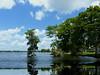 Reflections (npbiffar) Tags: outdoor water lake shimmer reflection landscape tree cypres sky blue clouds waterscape npbiffar fz200 lumix panasonic