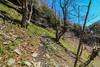 (Joshua Wells Photography) Tags: canon camera canonphotos t6i lens tripod longexposure waterfall subaru bmw turbo trees nature