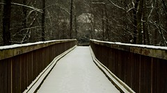 (Thomas Takes Pictures) Tags: snow bridge nature highlights snowing virginia path perspective focal depth field focus contrast color williamsburg hampton roads peaceful