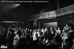 2018 Bosuil-Het publiek bij Grim Tim en Voltage 21-ZW