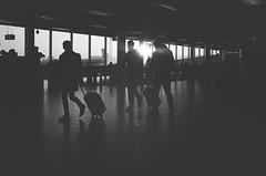 Jet Set (gato-gato-gato) Tags: 35mm asph amsterdam iso800 ilford ls600 leica leicamp leicasummiluxm35mmf14 leicasummiluxm50mmf14asph mp messsucher nl netherlands noritsu noritsuls600 schweiz strasse street streetphotographer streetphotography streettogs suisse summilux svizzera switzerland wetzlar zueri zuerich zurigo analog analogphotography aspherical believeinfilm black classic film filmisnotdead filmphotography flickr gatogatogato gatogatogatoch homedeveloped manual mechanicalperfection rangefinder streetphoto streetpic tobiasgaulkech white wwwgatogatogatoch noordholland niederlande manualfocus manuellerfokus manualmode schwarz weiss bw blanco negro monochrom monochrome blanc noir strase onthestreets mensch person human pedestrian fussgänger fusgänger passant