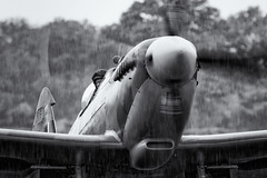 G-CGYJ/TD314 Supermarine Spitfire MkIXe (amisbk196) Tags: 2018 airfield aircraft headcorn amis flickr aviation unitedkingdom kent uk lashenden aerolegends gcgyj td314 supermarine spitfire mkixe