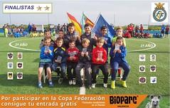 VIII Copa Federación Prebenjamín Fase**