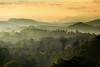 Sunrise@Switzerland (Rita Eberle-Wessner) Tags: switzerland schweiz sunrise sonnenaufgang morning morgen landschaft landscape berge mountains gebirge alpen alps bäume trees häuser houses nebel morgennebel dust fog morningfog bern