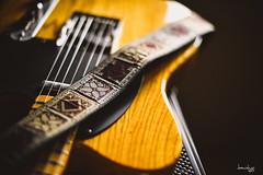 Catfish Silky + Fender Japan 52 Telecaster (Daniel Y. Go) Tags: nikon nikond810 d810 fx philippines catfish catfishstraps guitars fender fendertelecaster telecaster fenderjapan 52telecaster