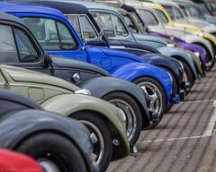 Bugged (katrin glaesmann) Tags: maikäfertreffen volkswagen käfer beetle classiccar oldtimer messegelände laatzen hannover wheels hoods colours plenty