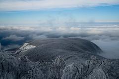 Winter Landascape