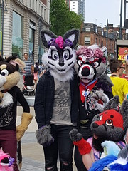 """Leeds furmeet May2018 • <a style=""""font-size:0.8em;"""" href=""""http://www.flickr.com/photos/97271265@N08/41348958485/"""" target=""""_blank"""">View on Flickr</a>"""