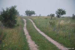 Волинське поле InterNetri Ukraine 600