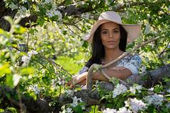 Oscany (QuarryClimber) Tags: woman female orchard spring brunette browneyes pretty beautiful appleblossoms sonya7riii sony85mmgm outdoorportrait portrait macksapples londonderrynewhampshire