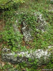 Крим, Таврські могильники на горі Кішка InterNetri Ukraine 2009 126