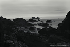 Incoming 0095 (All h2o) Tags: monochrome black white beach ocean sea coast island rock seaside pacific northwest sky olympic natiional park landscape tide wave peninsula